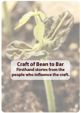 Craft of Bean to Bar